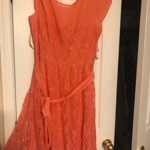 New Dressbarn coral/salmon lace eyelet dress